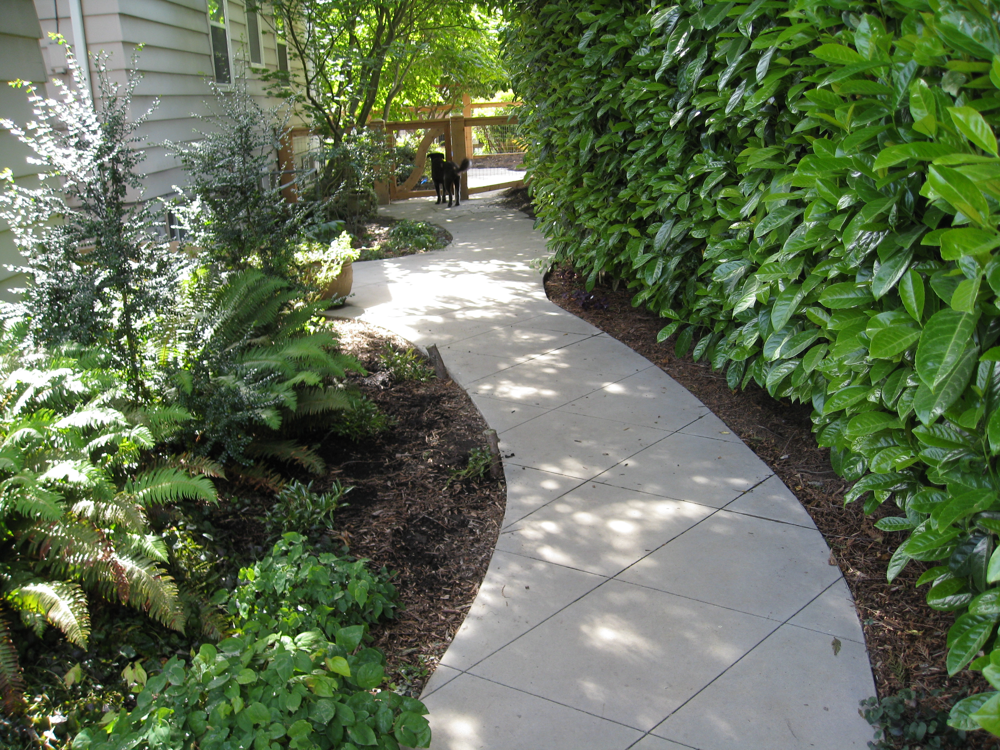 tinted scored curved path katemartindesign com